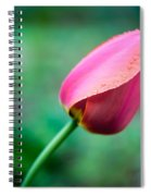 Herald Of Spring Spiral Notebook