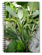 Herbs Spiral Notebook