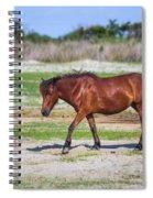 Herd 23 Spiral Notebook