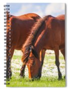 Herd 32 Spiral Notebook