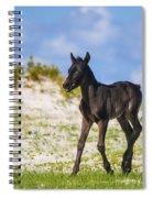 Herd 40 Spiral Notebook
