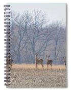 Herd Mentality Spiral Notebook