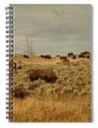 Herd Of Buffalo Spiral Notebook