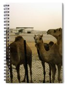 Herd Of Camels In A Farm, Abu Dhabi Spiral Notebook