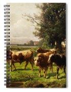 Herd Of Cows Spiral Notebook