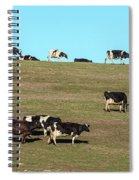 Herd Of Cows Grazing On A Hill, Point Spiral Notebook