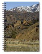Herd Of Elk   #7740 Spiral Notebook