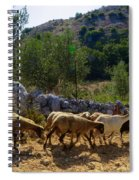 Herd Of Sheep In Tuscany Spiral Notebook