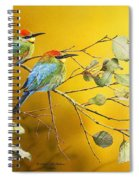 Here Comes The Sun - Rainbow Bee-eaters Spiral Notebook