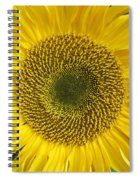 Here Comes The Sun.... Spiral Notebook