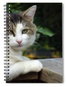 Here Is Looking At You Spiral Notebook