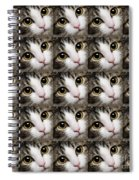 Here Kitty Kitty Close Up 25 Spiral Notebook