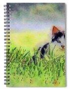 Here Kitty Kitty Kitty Spiral Notebook