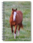 Here She Comes Spiral Notebook