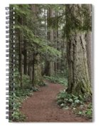 Heritage Forest Spiral Notebook