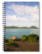 Hermitage Bay Panorama Spiral Notebook