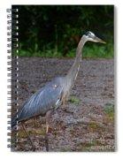 Heron 14-1 Spiral Notebook