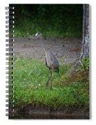 Heron 14-4 Spiral Notebook