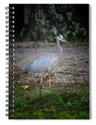 Heron 14-6 Spiral Notebook