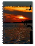 Heron And Seagull Sunset I Mlo Spiral Notebook