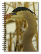 Heron Close Up Spiral Notebook