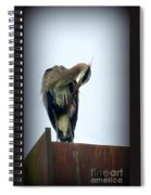 Heron Grooming Spiral Notebook