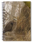 Heron In A Fog Spiral Notebook