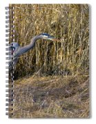 Heron In The Grass Spiral Notebook
