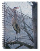 Heron Looking Out Spiral Notebook