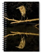 Heron Mirror On Maryland Canal Spiral Notebook
