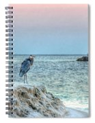 Heron On Beach Spiral Notebook