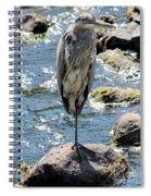 Heron On One Leg Spiral Notebook