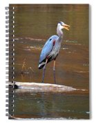 Heron On The Creek Spiral Notebook