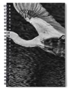 Heron On The Move Up Close Spiral Notebook
