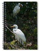 Heron Trio Spiral Notebook