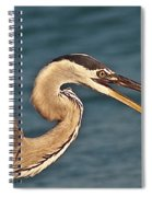 Heron With Catch Spiral Notebook