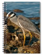 Heron With Crab Spiral Notebook
