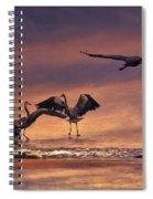 Herons At Sunset Spiral Notebook