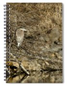 Heron's Winter's Watch Spiral Notebook