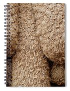 Hessian Boat Bumpers Spiral Notebook