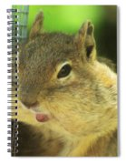 Hey Check Out My Big Cheeks Spiral Notebook