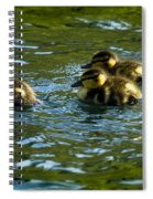 Hey Guys - What's That Spiral Notebook