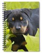 Hey Here I Am Spiral Notebook