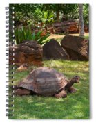 Hey - What About Me Spiral Notebook