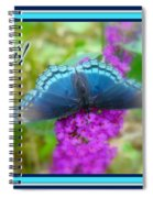 Hi Hello Greeting Card - Red Spotted Purple Butterfly Spiral Notebook