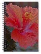 Hibiscus 1 Spiral Notebook