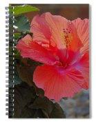 Hibiscus 2 Spiral Notebook