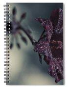 Hibiscus Acetosella Spiral Notebook