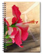 Hibiscus Along The Walk Way Spiral Notebook