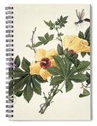 Hibiscus And Butterfly Spiral Notebook